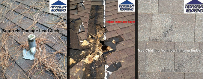 Willis Roof Repair